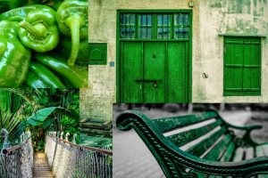 Color of the month: green – meaning and symbolism