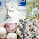 Meaning and symbolism of the color 'white'